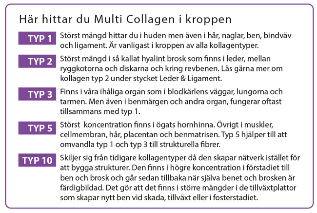 Explanation for types in Multi Collagen